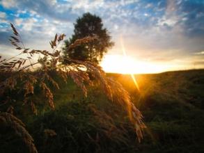 Лісна Велесниця, захід сонця